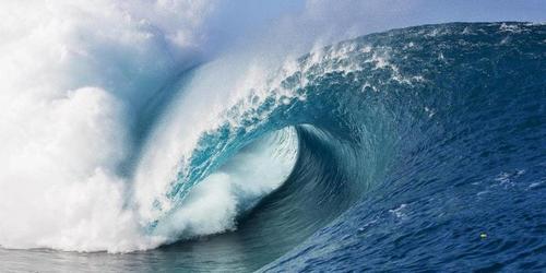 O surfista e a bolsa de valores